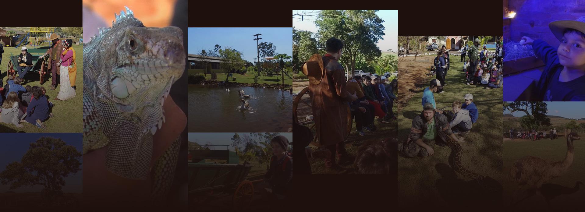 Galerias de Fotos e Vídeos do Sítio Santa Ânglea